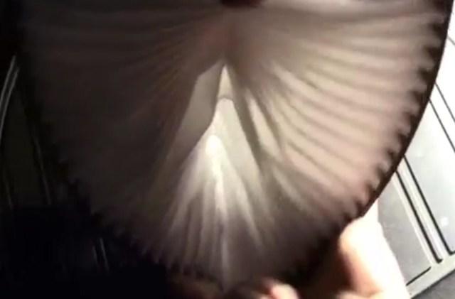 Фильтр воздушный Рено Сандеро: где находится, замена