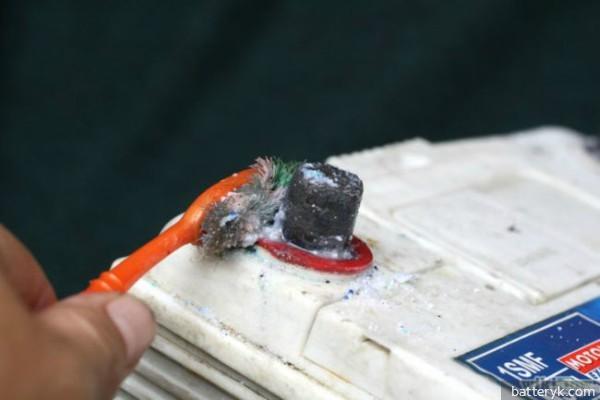 Чем смазать клеммы аккумулятора чтобы не окислялись: почему окисляются клеммы