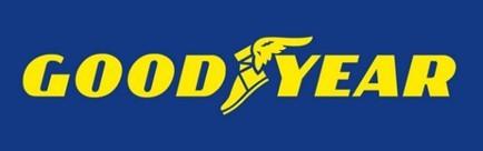 Шины goodyear: размеры, тесты, отзывы владельцев